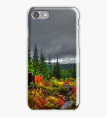 A Look From On High ~ Oregon High Cascades ~ iPhone Case/Skin