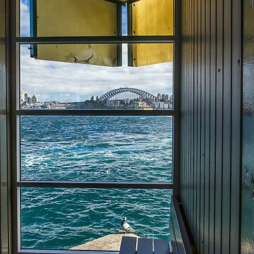 Escher's Pigeon - Sydney Harbour by BryanFreeman