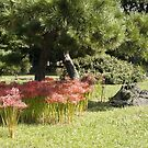 Lawn landscape: Hamankyuteiein Park in Downtown Tokyo by johnrf