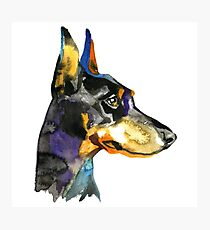 Doberman Animal dog watercolor illustration Photographic Print
