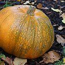 Autumn Gold by pix-elation