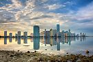 Miami Skyline by Bill Wetmore