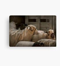 Animal - Sheep - The Order Canvas Print