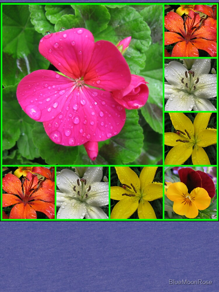 Raindrops On Petals Collage von BlueMoonRose