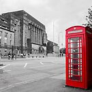 The Red Phone Box by Craig  Meheut