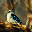 Little Downy Woodpecker In The Woods by Lois  Bryan