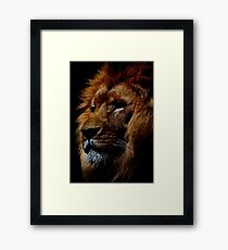 Face-11 Framed Print