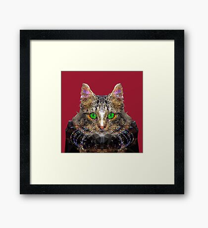 Imperial Boss cat Framed Print