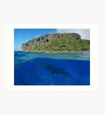 Coastal cliff split with whale underwater sea Art Print