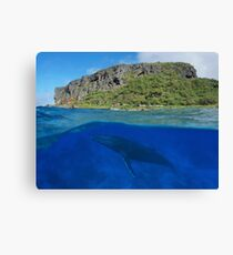 Coastal cliff split with whale underwater sea Canvas Print