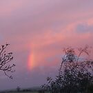 Reflecting Sunset on shifting cloud & part of Rainbow, Mount Pleasant.   by Rita Blom