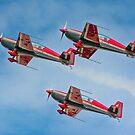 Royal Jordanian Falcons by SWEEPER