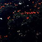 too divine to be dark  by queenenigma