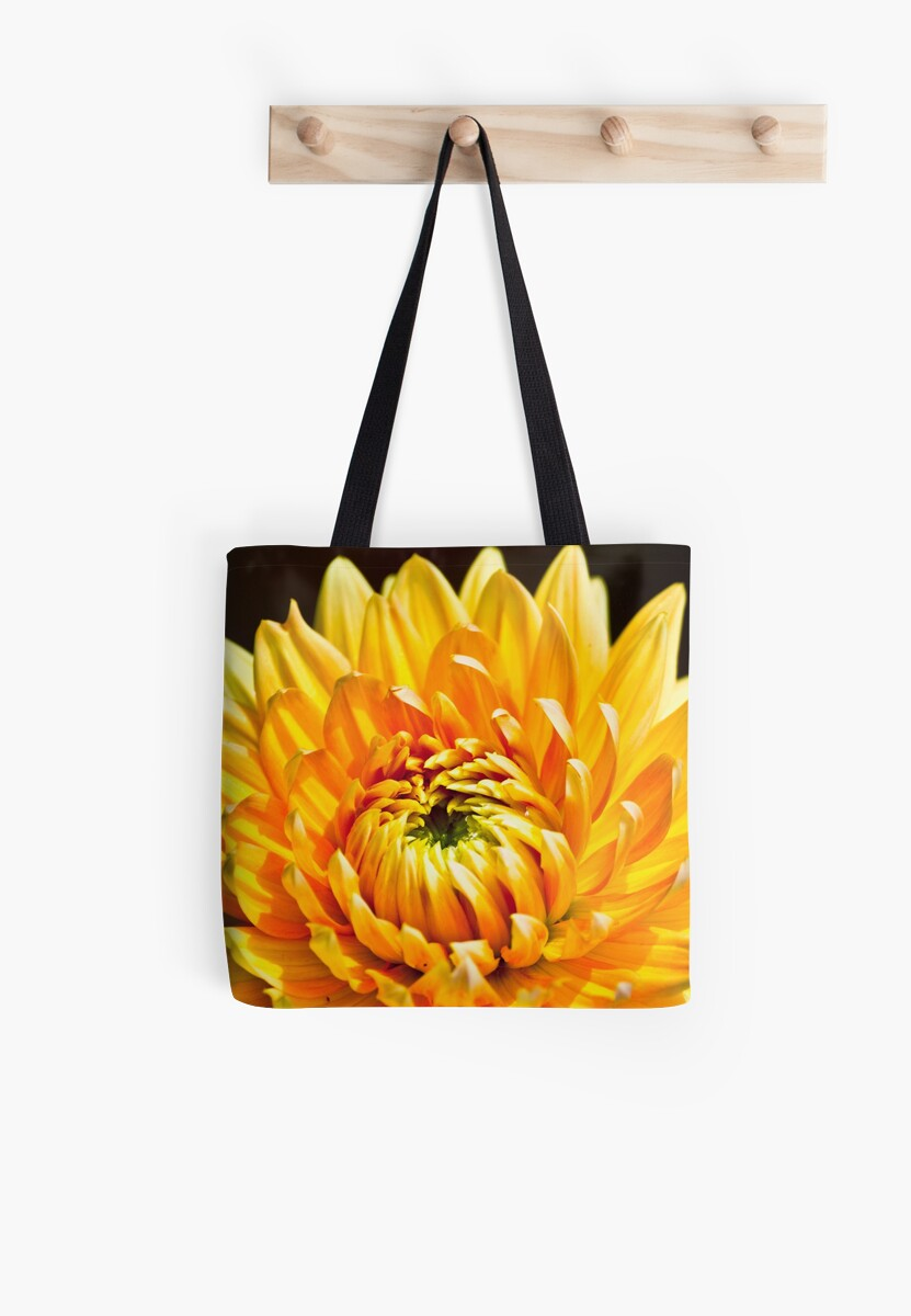 Bright Yellow Chrysanthemum by Vicki Field