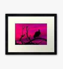 Vulture at Top of Tree Dark Scene Framed Print