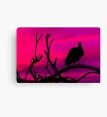 Vulture at Top of Tree Dark Scene Canvas Print