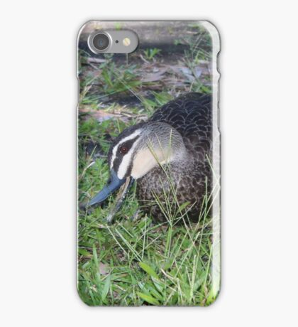 Delightful Duck iPhone Case/Skin