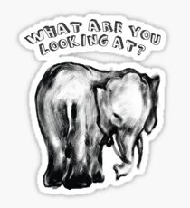 Elephant's Gaze Sticker