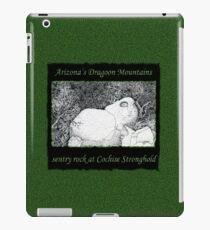 Sentry Rock or Indigenous Multi-tasking iPad Case/Skin
