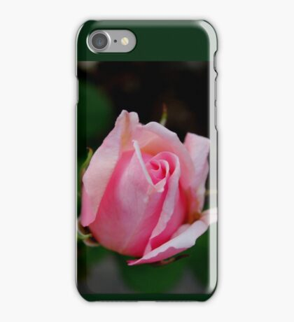 Friendly Rose Bud iPhone Case/Skin