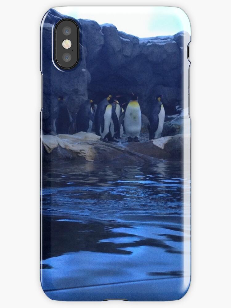 Penguin Plunge by Lauren Jacobson