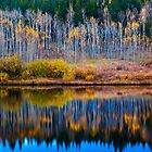 A Time For Reflection by John  De Bord Photography