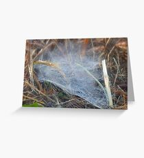 Autumn Spider's Web Greeting Card