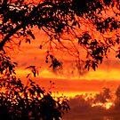 hot sky by jimofozz