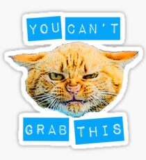 You Can't Grab this! Sticker