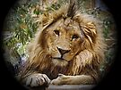 """""""King of the Jungle"""" by Gail Jones"""
