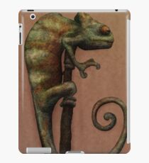 Its a Chameleon iPad Case/Skin