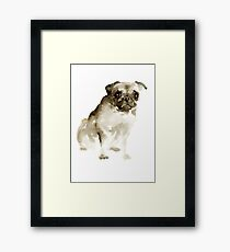 Pug Dog Animal Poster Watercolor Painting Brown Drawing Framed Print