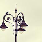 Bird on a Lamp by Karen E Camilleri