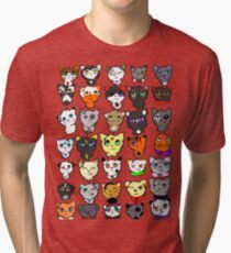 The many faces of Acorn Tri-blend T-Shirt
