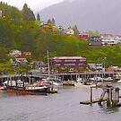 Ketchikan Township, Alaska, 2012. by johnrf