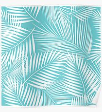Leaves of palm tree Poster
