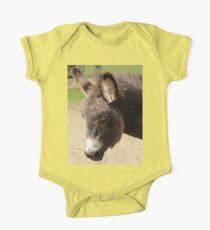 Little donkey Kids Clothes