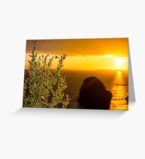 virgin rock and wild flowers sunset Greeting Card