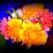 """Voucher"" Bright coloured Bouquet - ""Gorgeous Flower Cards"" Challenge"