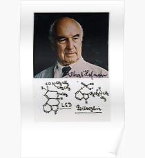 Albert Hofmann - LSD Poster