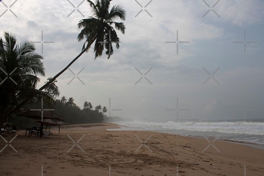 African Beach by Raquel Fletcher