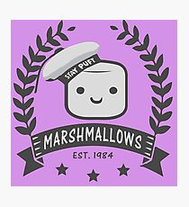 Stay Puft Marshmallows Photographic Print
