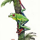RED-EYED TREE FROG - watercolor painting by Rebecca Rees