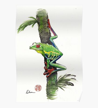 RED-EYED TREE FROG - watercolor painting Poster
