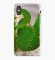 apothecary chef iPhone Case/Skin