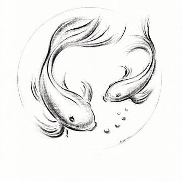 Good Luck Koi - Koi Fish Charcoal Pencil Drawing by tranquilwaters