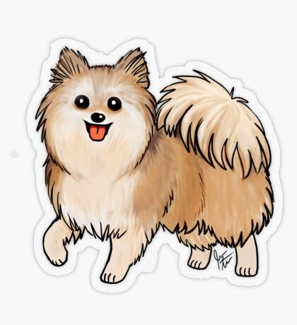 Pomeranian Transparent Sticker