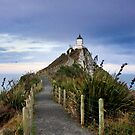 Nugget Point Lighthouse by Hannah Welbourn