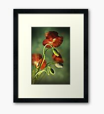 Red Poppies Impression Framed Print
