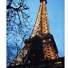 La Tour De Eiffel by Catherine C.  Turner